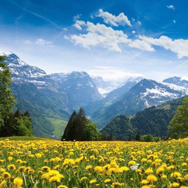 Die Schweizer Berge, Inspirationsquelle für die Kollektion Mountain...